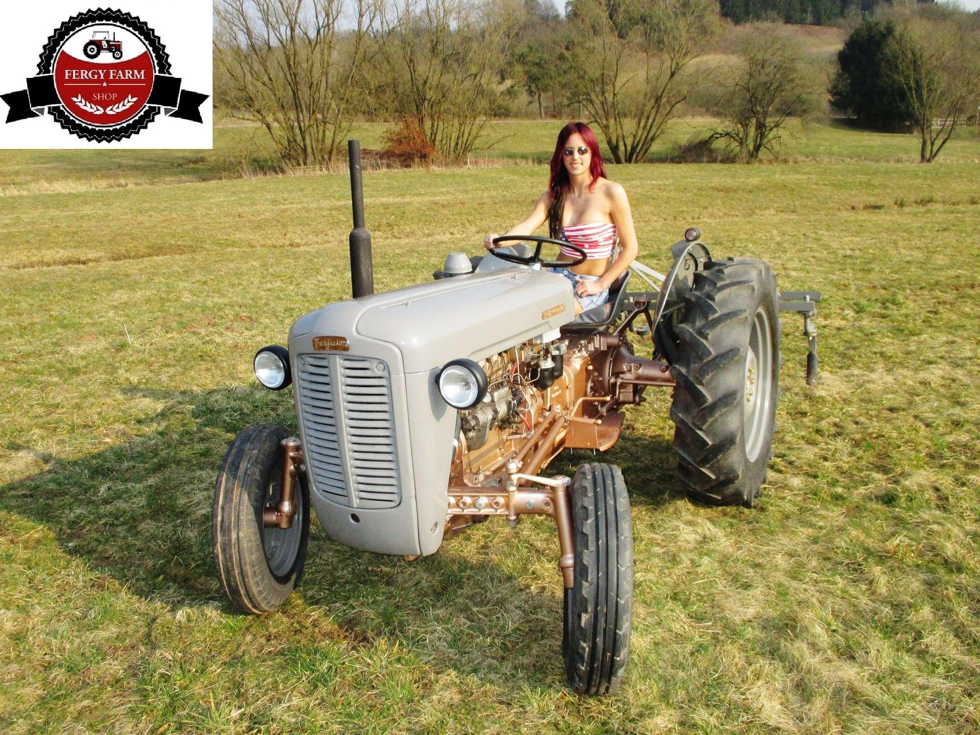 Teile & Zubehr fr Traktoren MF35 Fronthaube Emblem Traktor ...